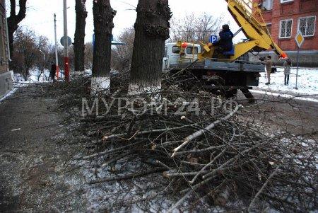 Подрезка деревьев на Октябрьской завершена. Следующие - Экземлярского и Коммунальная